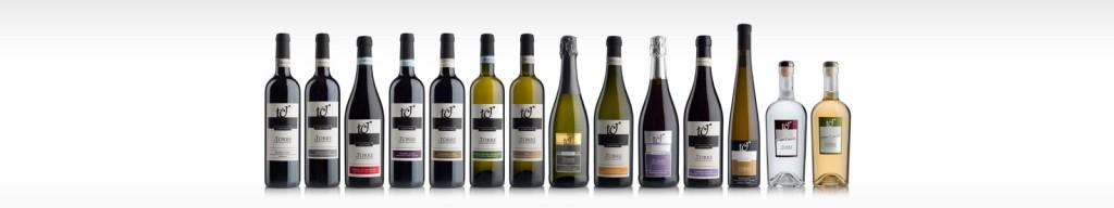 selezione-vini-tr-bassa
