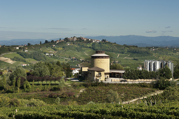 Tasting at cellar with Farinata of Castel Rocchero