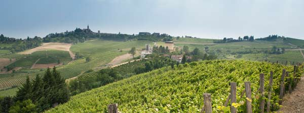 Visit and taste the Astisan Langhe